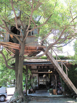 18ツリーハウス@いわい家具・ウッドスタイルカフェ