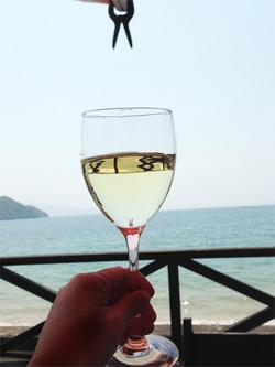 7白ワイン@トラットリア・ジロ