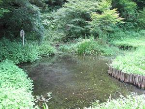 9幣立神宮(神社)