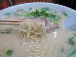 7ラーメン麺@いっぽう