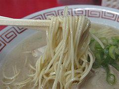 料理:ラーメンのカタ麺@長浜大将・長浜ラーメン街