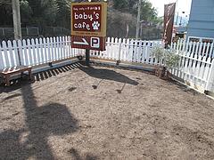 24店内:ドッグラン@baby's cafe(ベイビーズカフェ)・ドッグカフェ