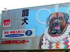 闘犬センター@高知・桂浜