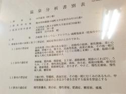 12温泉分析表@旅館・四つ葉