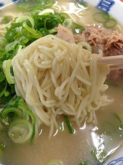 6ナシヤワ麺@元祖長浜屋