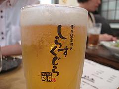 5居酒屋:生ビール@博多漁家磯貝・しらすくじら・天神店