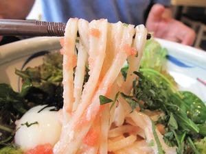 7博多明太サラダうどん(冷)麺@茶ぶ釜
