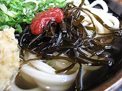 料理:うめこんぶ(冷)アップ@讃岐うどん大使・福岡麺通団