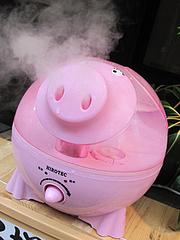 外観:豚(ブタ)の加湿器HIROTEC(ヒロテック)@麺や・てんき・平尾