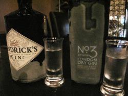 10ジンの飲み比べ@中洲ロックハリウッド・バー・エタニティ