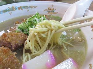 17カツラーメン麺@たつ