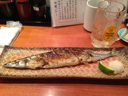 5サンマの塩焼き@すし磯貝天神イムズ店