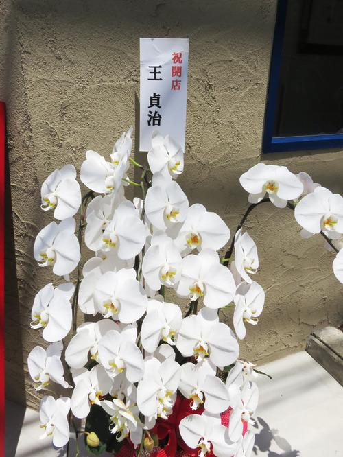 3王さんの花