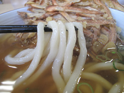 9うどん麺@博多うどんセンター・中野屋総本店