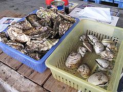 料理:カキとハマグリ@牡蠣小屋だいゆー(だいゆう・ダイユー)・糸島