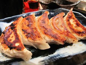 9肉ぎょうざ380円@らあめん銀波露