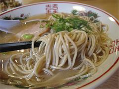 9ランチ:ラーメン麺@白龍食堂・那珂川