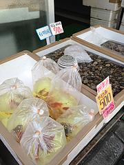 21外観:美野島商店街の魚屋さん@サンディッシュ・カフェ・美野島
