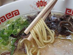 料理:とんこつラーメン麺@ラーメンぽんぽこ亭大橋店