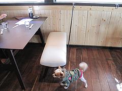 6店内:リードフック@baby's cafe(ベイビーズカフェ)・ドッグカフェ