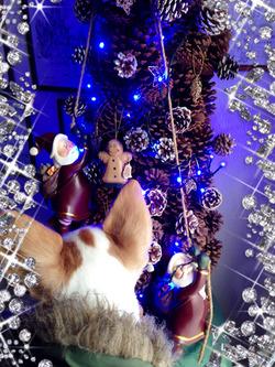 5ツリー@クリスマス
