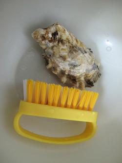 7カキ洗おう@博多街道魚市