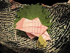 料理:海山松花堂弁当1@海山邸・ザショップス