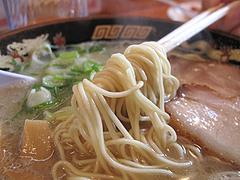 料理:麺フツー@麺屋ラ賊・ラーメン