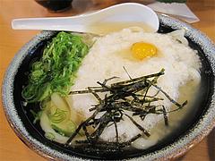 料理:山かけうどん580円@長住うどん・福岡市南区