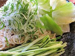 9料理:廣島つけ麺(冷)野菜@廣島つけ麺本舗ばくだん屋・中州店