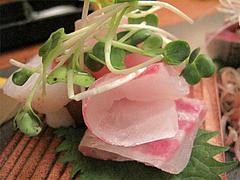 料理:刺盛のタイコさん@博多まかない屋