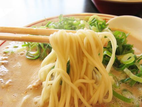 8くまちゃんラーメンこってり麺