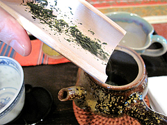 料理:煎茶セット・茶葉入れる@おちゃの舎 野の花・福岡県小郡市