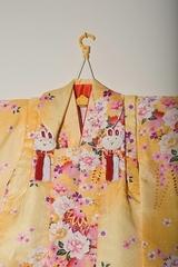 Home page kimono photo 033c