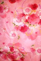 7sai Pink furisode moyou