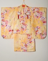 Home page kimono photo 030c