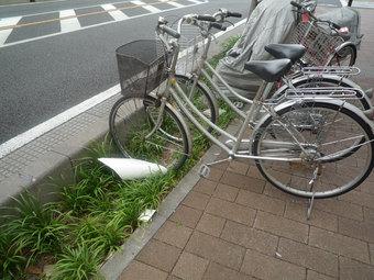 市役所南通りの植え込みに置かれた自転車