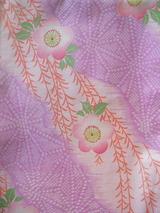 枝垂桜昼夜