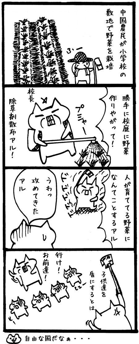 20141207-143336野菜