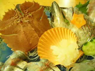 ムツゴロウー貝
