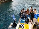 3-diving-1020-004