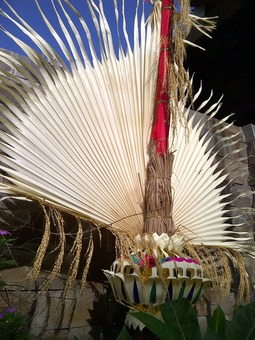 Denpasar Selatan-20120131-00826