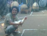 IMG00917-20110529-1139