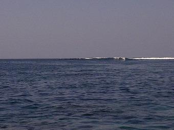 Denpasar Selatan-20110920-00089