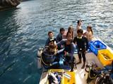 3-diving-1020-003