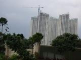 20100130-003