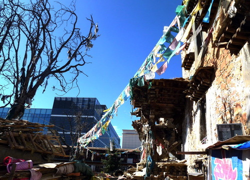 20121216_写真_チベット_5