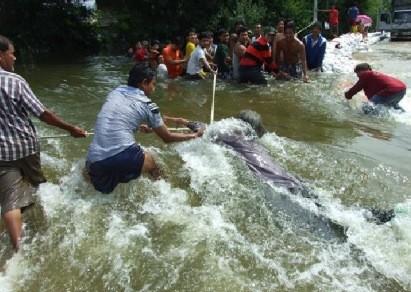 20111013_thai_news5