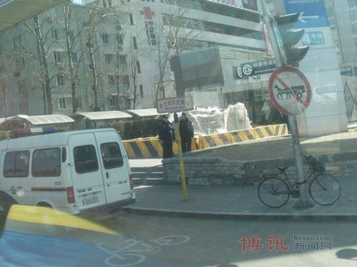 20110308_chinese_jasmine2