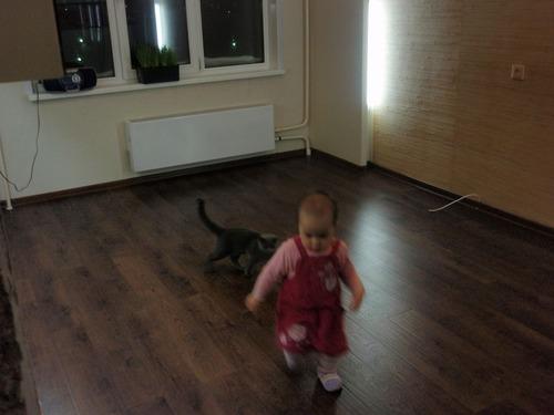 20110408_condominium